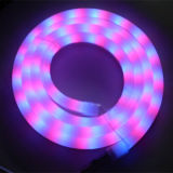 Alta flessione al neon luminosa di IP65 LED Rgby