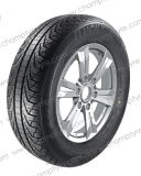 Populäres Muster, Radialauto-Reifen mit allen Bescheinigungen