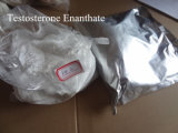 Testosterona esteroide Enanthate del polvo de la pureza elevada para el Bodybuilding CAS 315-37-7