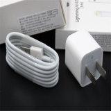 Caricatore 5W della parete del cubo per il caricatore del USB di iPhone del Apple