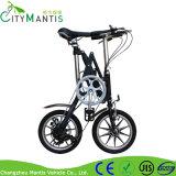 脂肪質のタイヤが付いているFoldable Eバイク