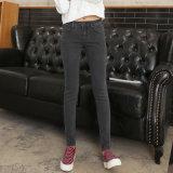 Più nuovi jeans delle signore di disegno di vendita calda europea