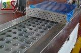 Máquina del abrigo del acero inoxidable con la empaquetadora del certificado