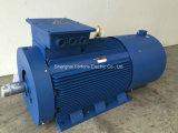 Yvf2 van de Reeks van het Lage Voltage de Veranderlijke van de Frequentie Regelbare VFD AC Motor van de Snelheid