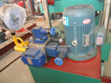 La presse de vulcanisation de vente de plaque en caoutchouc/hydrauliques chauds enfoncent l'Europe