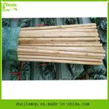Деревянная ручка Specialy для ручки частей веника и Mop деревянной