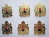 熱い金の火の記念品の硬貨