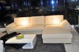 Amerikanisches Wohnzimmer-Leder-Sofa (SBO-3992)