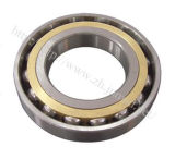 Rolamento do rolamento, rolamento barato, rolamento de esferas angular do contato (HS05383)