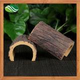 Rettili & anfibi del granchio dell'eremita di Decorfor di paesaggio dell'ornamento della corteccia della resina