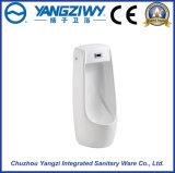 正常な縦の誘導の陶磁器の尿瓶