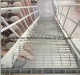 De hete Ondergedompelde Gegalvaniseerde Ladder van de Roosters van de Staaf van het Staal van het Platform van de Vloer