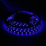 高い明るさIP67青いカラーSMD5050チップ60LEDs 14.4W DC12V LEDストリップ