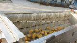 Handelskartoffel-Schalen-Maschine des Edelstahl-Mstp-1000, Melone Peeler, Karotte-Wasserbrotwurzel-Haut Peeler