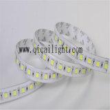 최고 판매 제품 Superbright 높은 CRI 5050 유연한 LED 지구