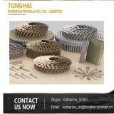 Chiodo d'acciaio del tetto della bobina del fermo di alta qualità