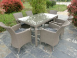 고정되는 고리 버들 세공 옥외 가구를 식사하는 테이블 7개 피스 장방형