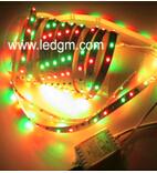 Luz de tira al aire libre impermeable de la baja tensión LED del RGB 3528 del precio de fábrica 12VDC