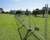 Australien-Standardvieh-Zaun galvanisierter Zaun verwendet im Bauernhof