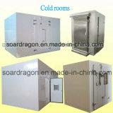 Cella frigorifera dell'alloggiamento freddo di memoria del pollo