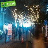 Luzes ao ar livre da corda da luz feericamente do diodo emissor de luz para a decoração da árvore