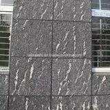 Tramite mattonelle del nero della foschia del granito di Lactea per la parete