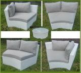 Sofás ao ar livre do lazer da forma de vime ao ar livre da mobília (2908)