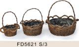 Conjunto de 3 vasos de flores naturais de salgueiro