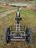 Driewieler van de Lading van de Rem van de Band van 4.0 Duim de Vette Dubbele met de AchterSteun van het Staal