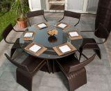 PEの藤の庭のセットを食事する屋外のテラスの家具