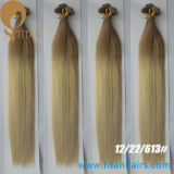 Cheveux humains brésiliens de Remy Ombre de Vierge de Wholsale d'usine