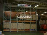 Mecanismo impulsor resistente en el tormento de la paleta para el almacenaje del almacén