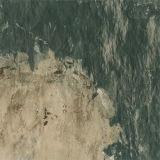 Mattonelle di pavimento rustiche lustrate (4064)