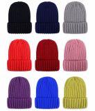 涼しい冬の標準的なアクリルの編む帽子
