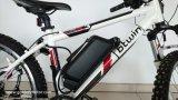 Pacchetto eccellente per le bici elettriche, tipo della batteria di qualità LiFePO4 48V 12ah del delfino