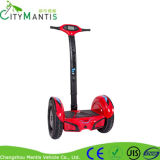 Движение города баланса собственной личности оборудует самокат 2 колес электрический