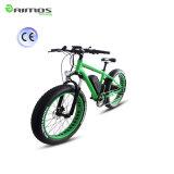 脂肪質のタイヤが付いているAimos 48V 500Wの電気バイク