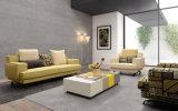 Il sofà domestico moderno del tessuto del salone della mobilia ha impostato (HC1407A)