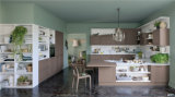 Kundenspezifische hölzerne Belüftung-Küche-Möbel