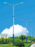 Surtidor experto de la luz solar del LED