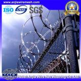 Гальванизированное Concertina Razor Wire для Fence с (CE и SGS)