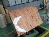 Покрасьте катушку покрынную цветом гальванизированную стальную PPGI покрытия 25/11micron Z40-90