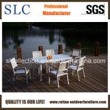 Mobília ao ar livre elegante/mobília ao ar livre projeto de alumínio (SC-B8877)