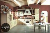 Mobilia europea della cucina del PVC di stile dell'agitatore (zc-053)