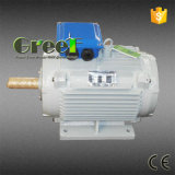 50 rpm a 3.000 rpm imán permanente AC Generador en venta