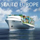 Mare di trasporto, oceano, trasporto a Felixstowe, Regno Unito dalla Cina