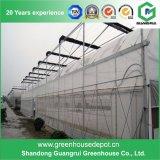 Invernadero plástico caliente de la película del PE del bajo costo de la venta para la agricultura
