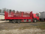Carro del cargo de la marca de fábrica 6X4 de Sinotruk