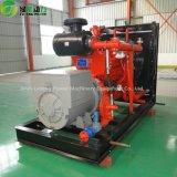 Biogasの貯蔵タンクが付いている熱い販売のBiogasの発電機