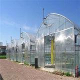 Invernadero de la estructura de acero para la granja
